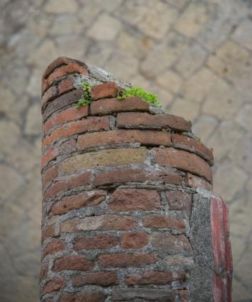 Vesuvius - lesliepaigephotography-2461